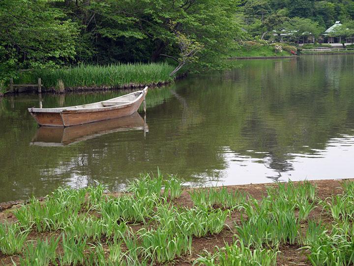 S1001 Boat Pond