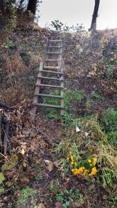 Part 4 20003 Ladder up the Hill
